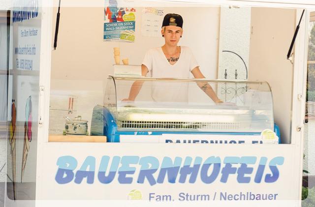 Nechei's Bauernhofeis Salzburg